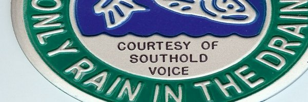 Southold VOICE medallion
